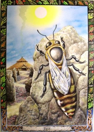 Druid Animal Oracle: The Bee-Philip Carr-Gomm