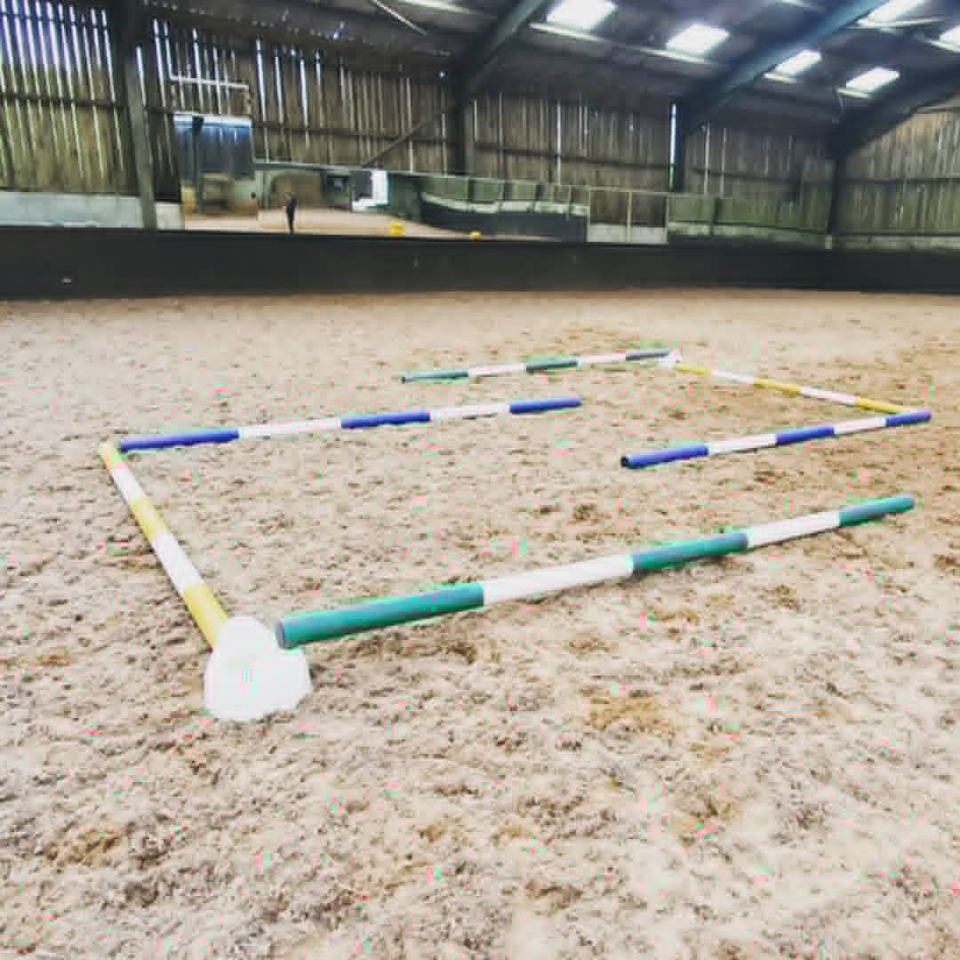 Polework layouts for horses in 2020 Webinar, Healthy