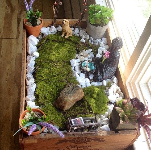 How To Make A Small Indoor Zen Garden Indoor Zen Garden, Mini Zen Garden,