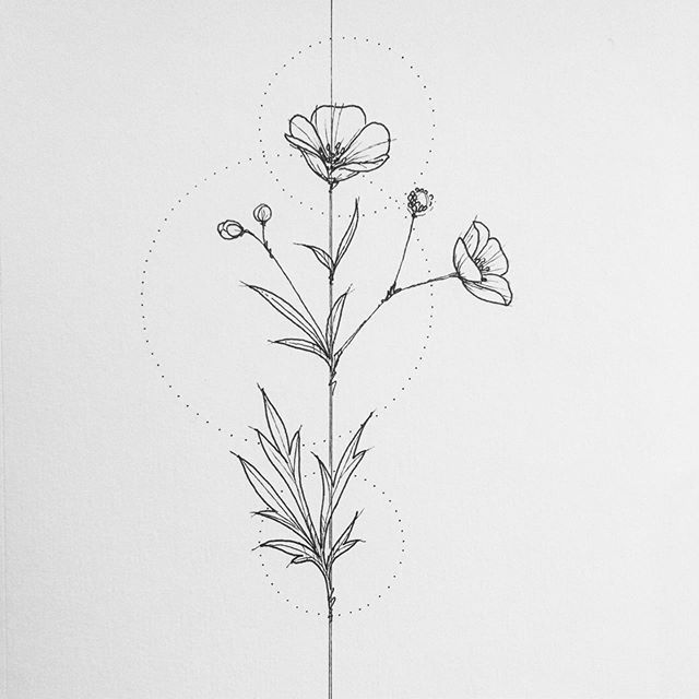 New The 10 Best Drawing Ideas Today With Pictures Buttercup Inkandpaper Makearteveryday Sketchwo Buttercup Tattoo Buttercup Flower Wildflower Drawing