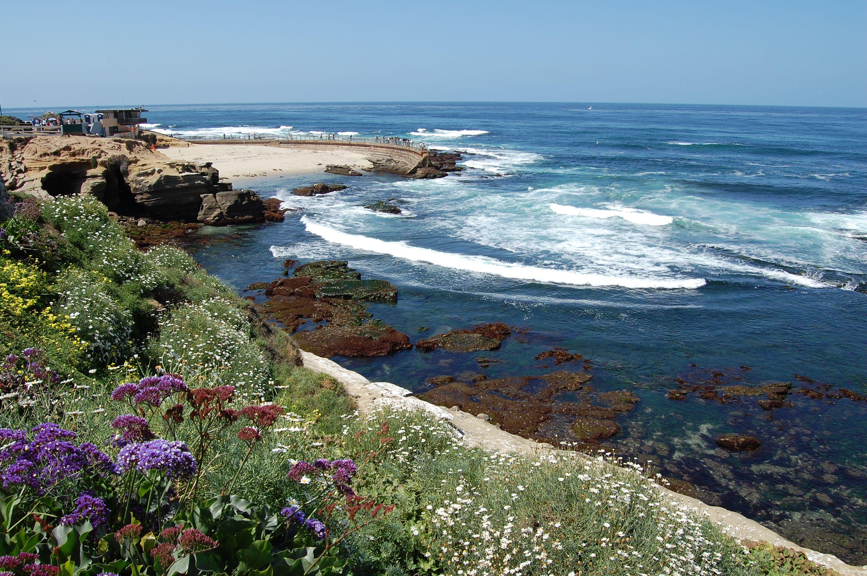 La Jolla | Councilmember Barbara Bry (District 1) - San Diego