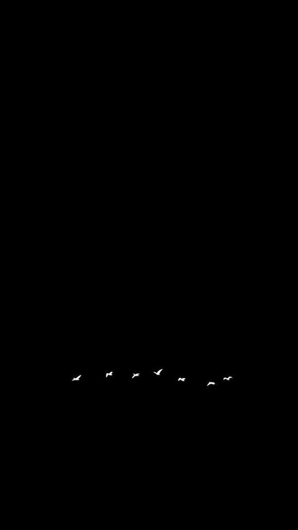 Explore the Most Downloaded of Black Wallpaper Background for iPhone 11 Pro Max 2020 from rebelinanewdress.com