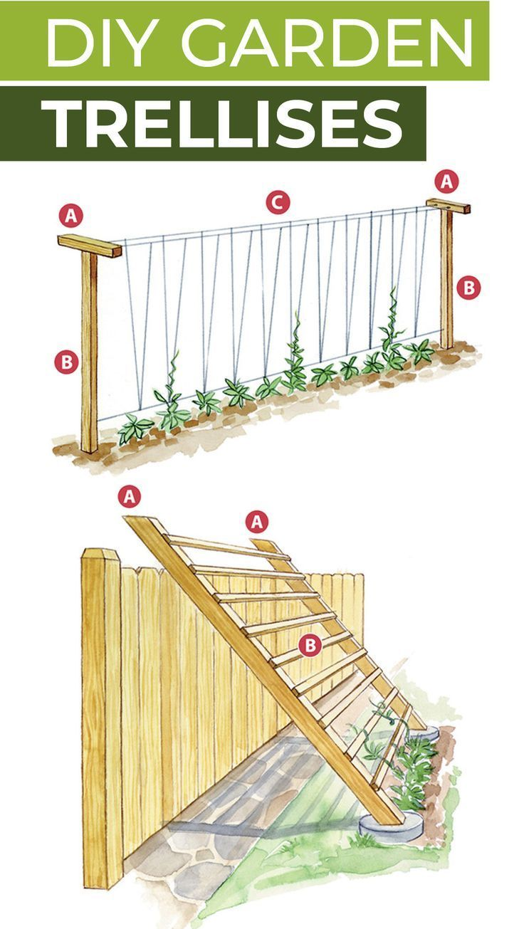Photo of 4 DIY vegetable garden trellises