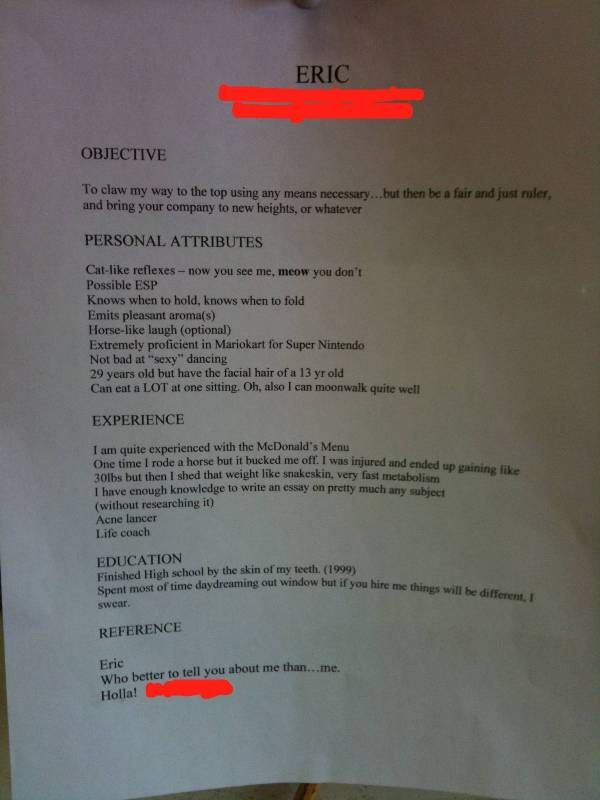 PHOTO Is This The Worst or Best Resume Ever?