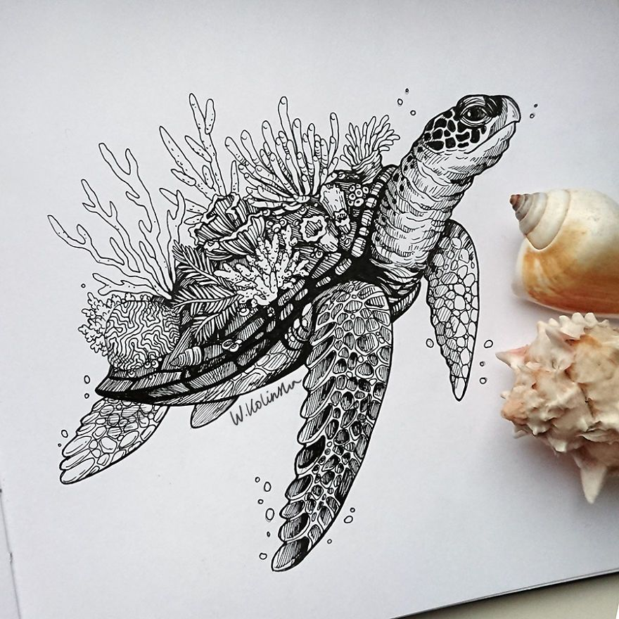 I Create Intricate And Detailed Drawings Of Animals Embedded With Their Natural Habitats Turtle Drawing Drawings Animal Drawings