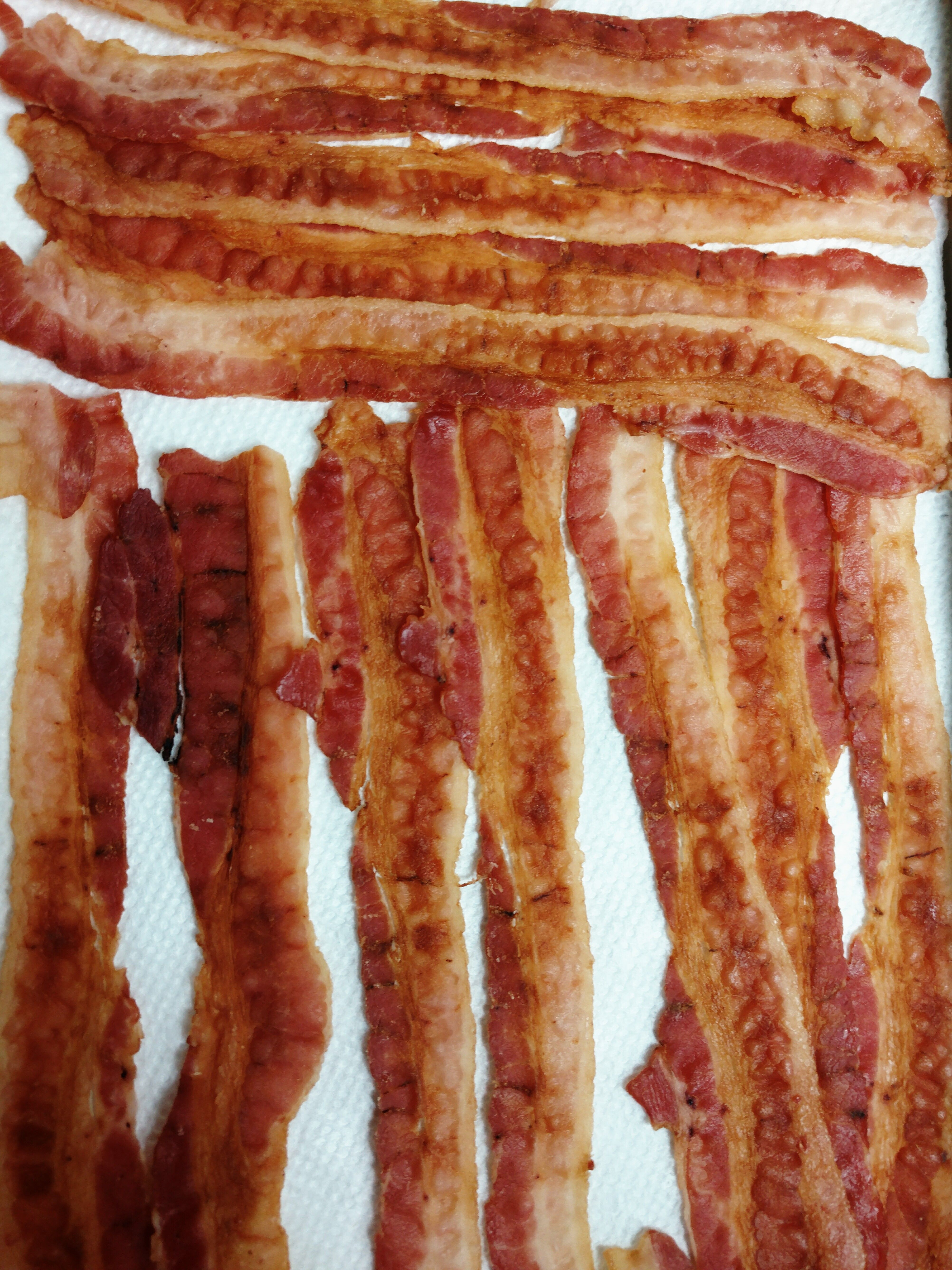 Freeze Dried Cooked Bacon In My Harvest Right Home Freeze Dryer
