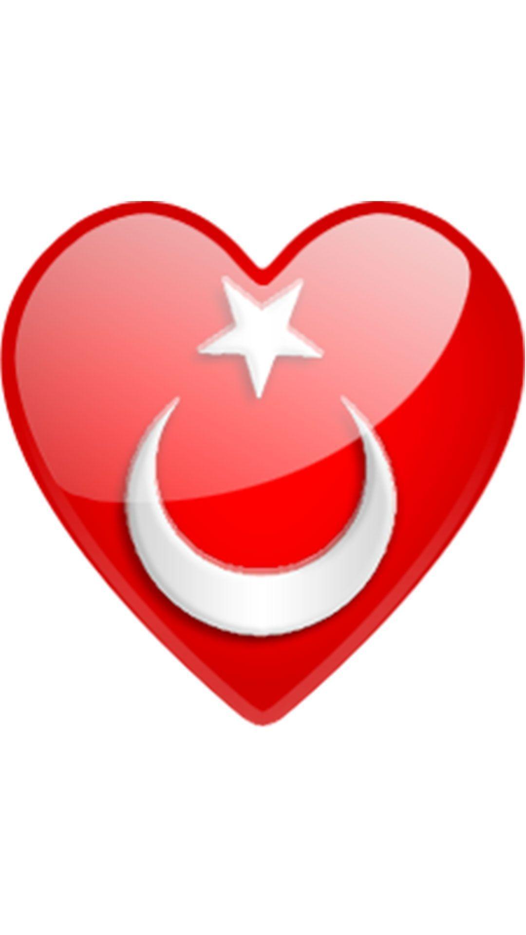Kalpli Turk Bayragi Resimleri Bayrak Resim Sanatcilar