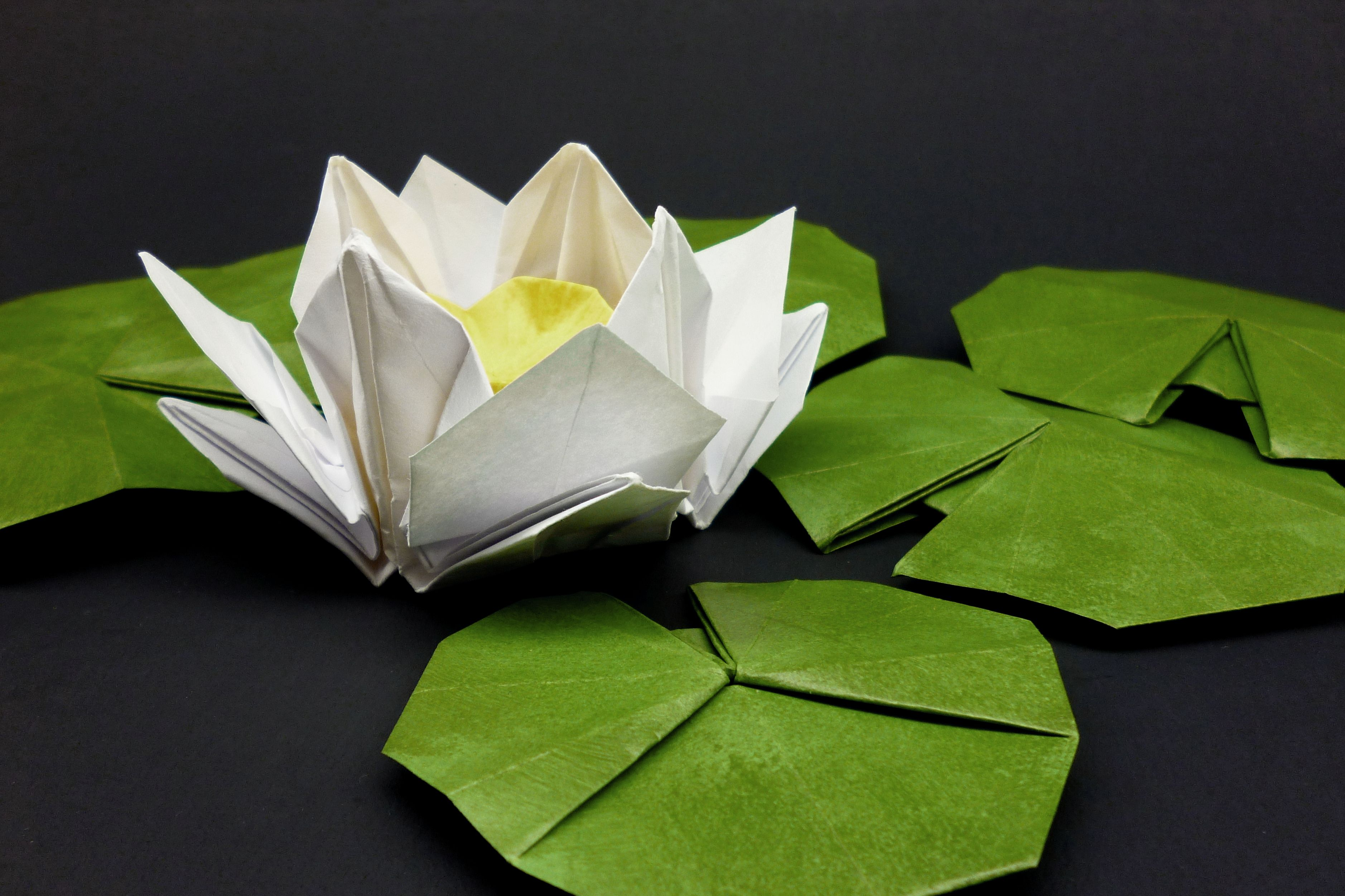 White Origami Water Lily