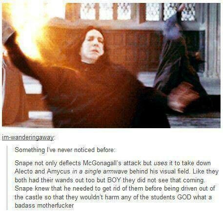 This is why we love snape.