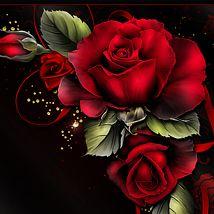 Drama Rosas 2D 3D Models moonbeam1212 de Moonbeam | Roses | Flower art, Flower wallpaper, Rose