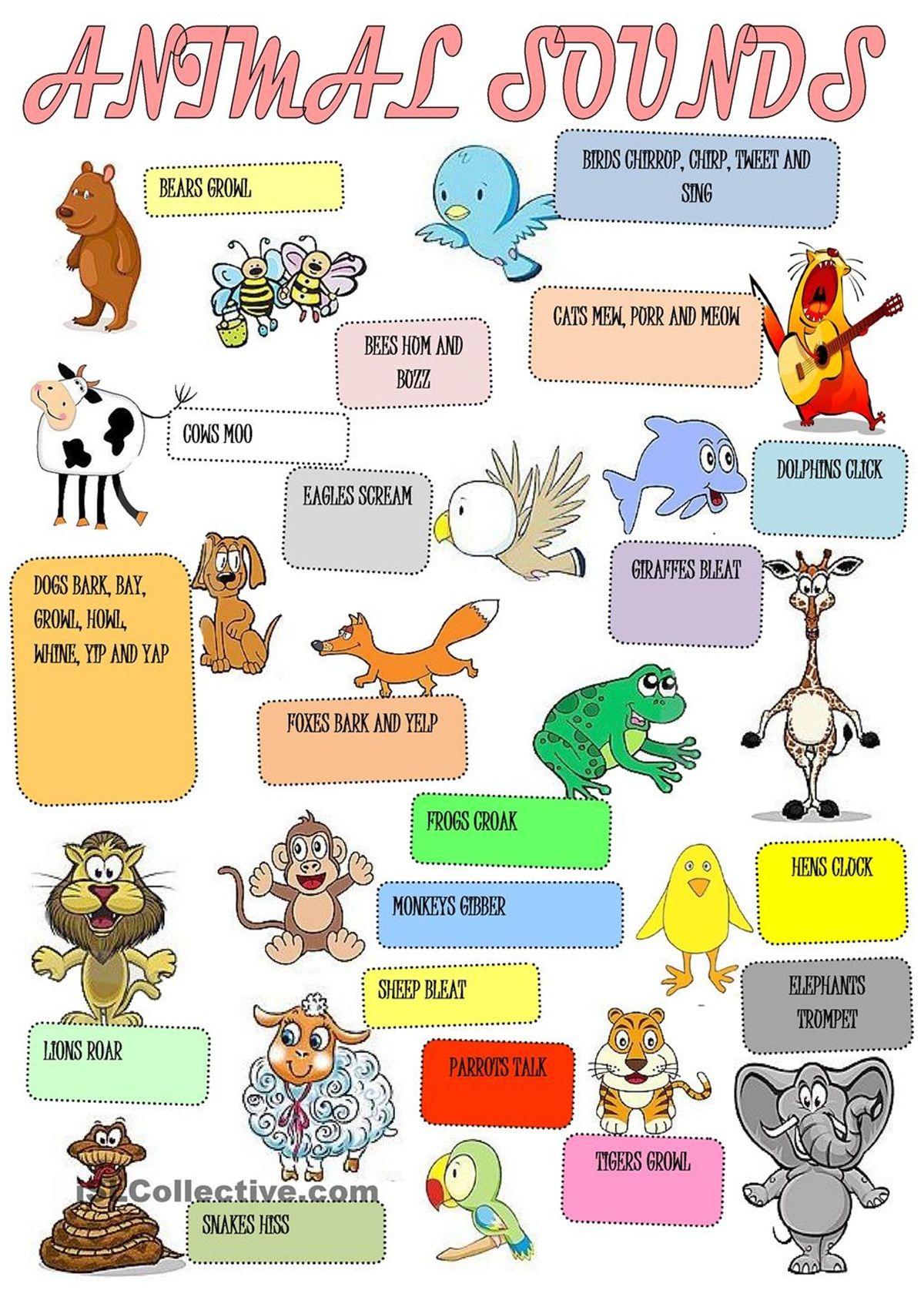 Animal Vocabulary Baby Animals Kids Nursery Rhymes Animal Worksheets