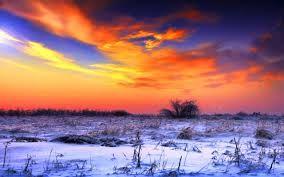 beautiful winter backgrounds - Google Search