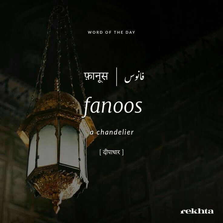 Fanoos | Urdu words and meanings | Urdu words with meaning, Hindi