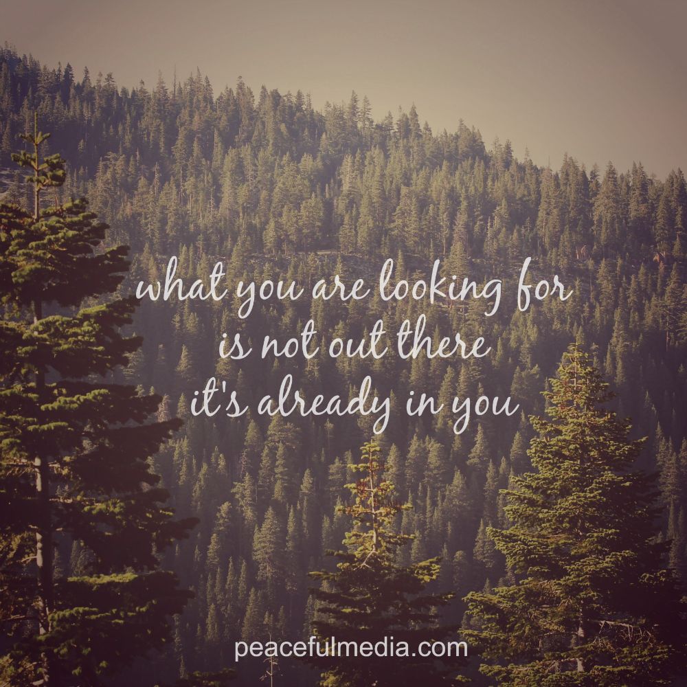 Forest Quotes: #quote #motivation #inspiration #inspirational #forest