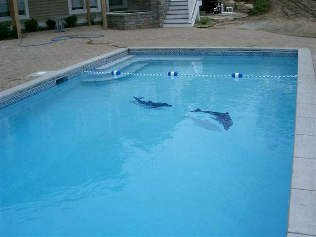 Stylish swimming pool fish tiles with dolphin mosaic pool for Raising fish in a swimming pool