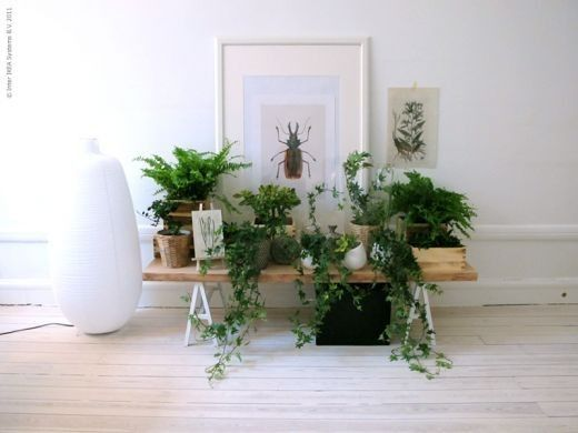 green coffe table