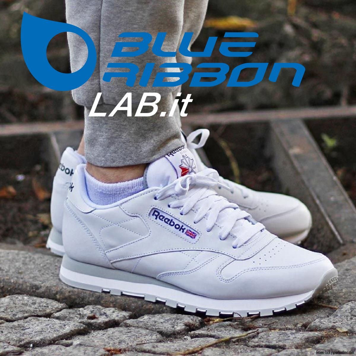 BlueRibbonLab: Reebok Sneakers LO - CLASSIC LEATHER - 2214