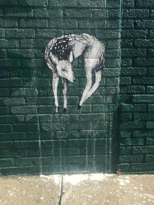 emilysketches street art