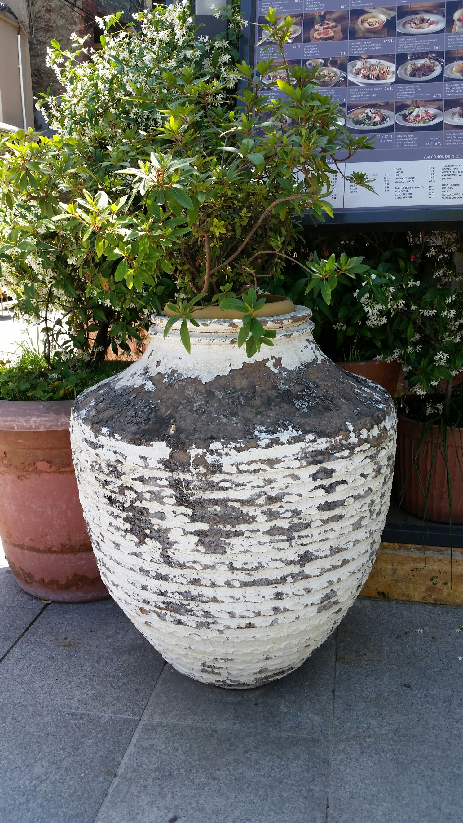 Outside a Turkish restaurant. Nice natural weathered look.