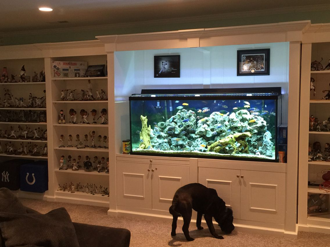 Basement sports shelf unit with fish tank in the middle for Bookshelf fish tank