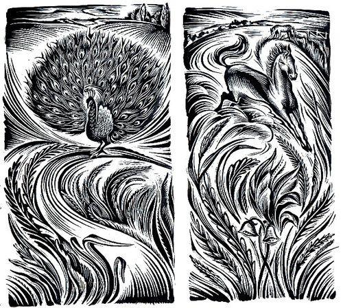 Cathie Bleck - Black and White artworks