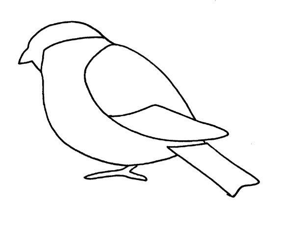 PunatulkkuJpg   Kevt    Winter Bird