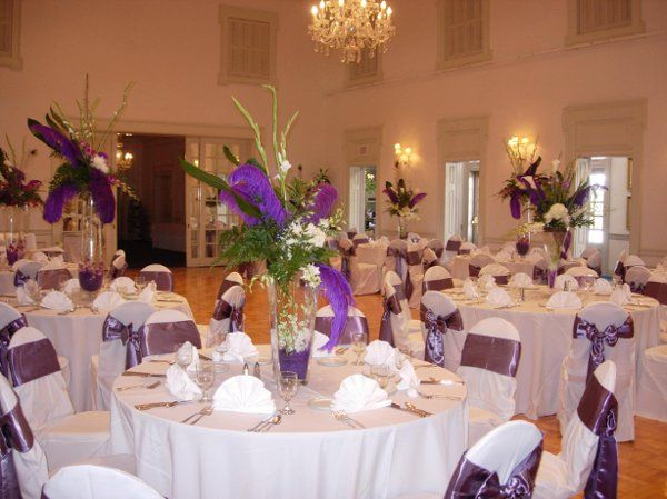 Image Detail For Purple White Centerpieces Chairs Fall Indoor Reception Spring Summer Diy