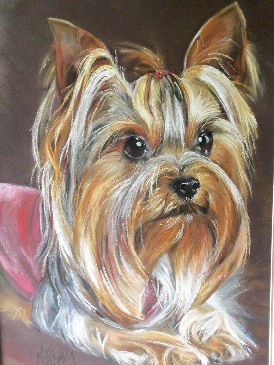 Chien yorkshire pastel peinture 50x70 cm par marylise - Dessiner un yorkshire ...