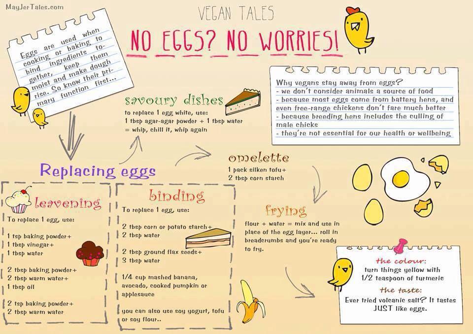 A Baker S Guide To Vegan Egg Substitutes Vegan Egg Substitute Vegan Eggs Substitute For Egg
