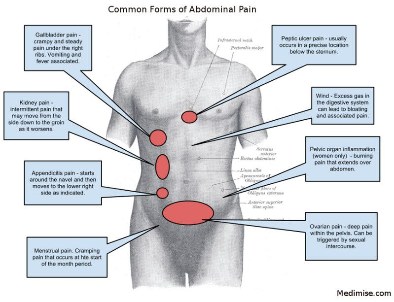 Right Side Organs Right Left And Central Abdominal Pain