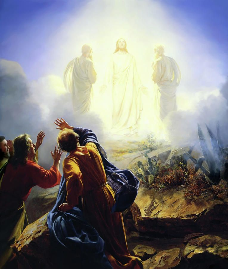 Carl Heinrich Bloch Transfiguration | The transfiguration, Bible pictures,  Jesus pictures
