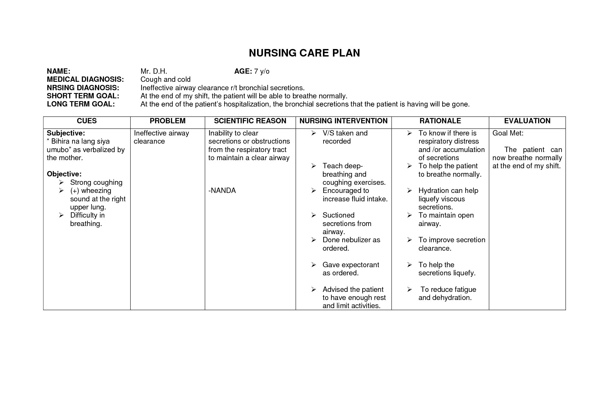 Blank Nursing Care Plan Templates