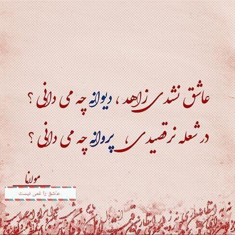حضرت مولانا Rumi Love Quotes Persian Poem Persian Quotes