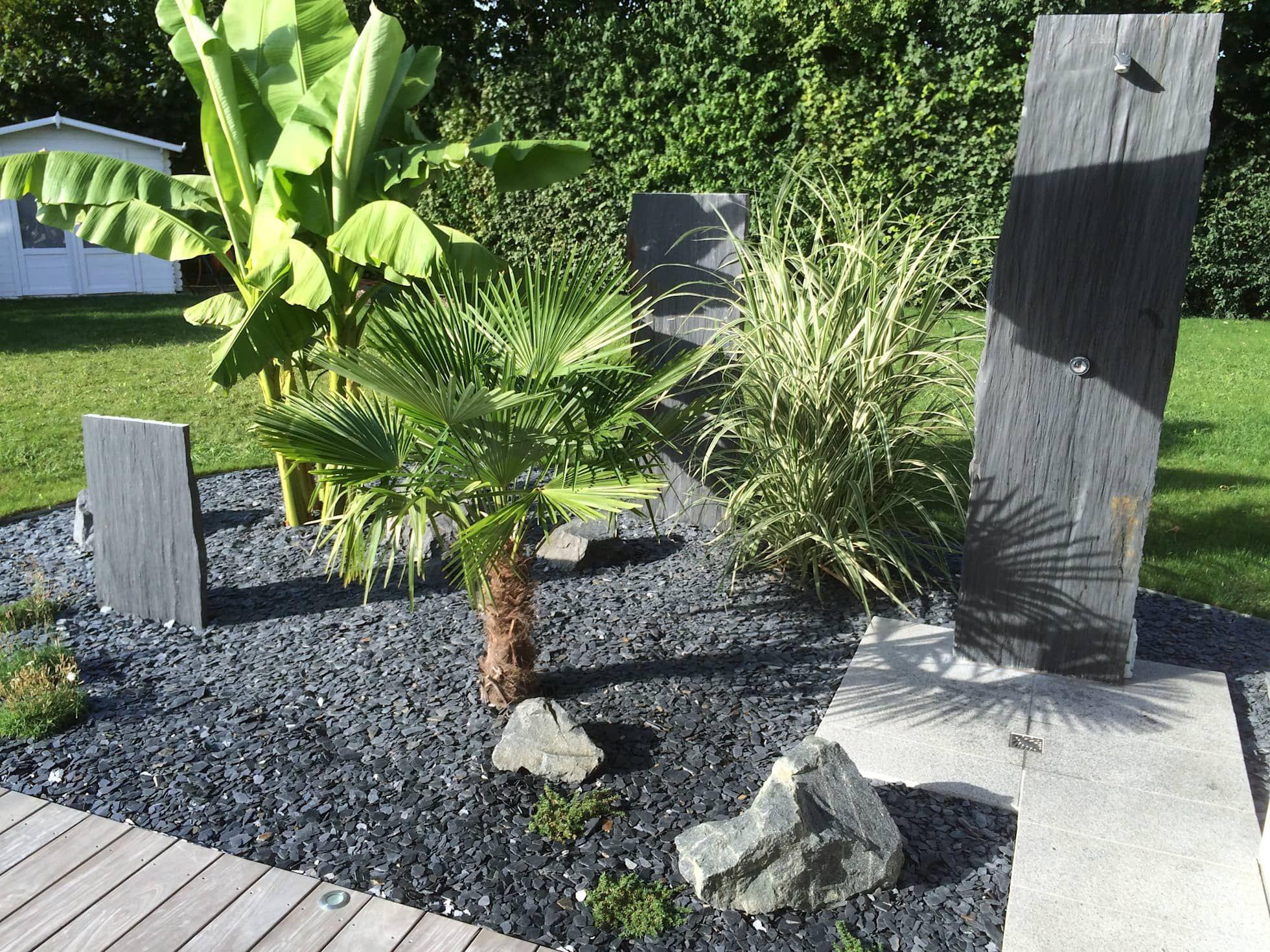 Massif de plantes: jardin de style par schwein aménagement, tropical pierre
