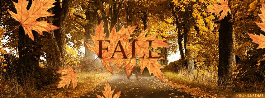 Free Fall Facebook Covers for Timeline, Pretty Autumn