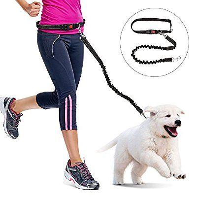 Dog Training Lead Iwilcs Handsfree Dog Lead X2f Dog Walking