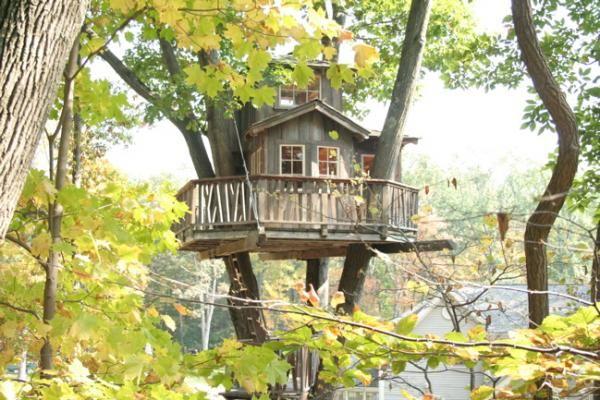 De Magische Boomhut : Tree houses by pete nels boomhut en boomhutten