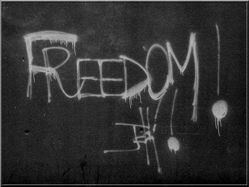Freedom !