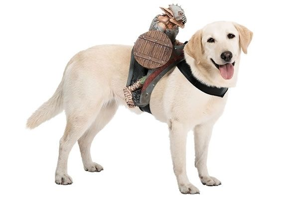 Goblin Riders For Your Dog S Costume Pet Costumes Dog Costumes