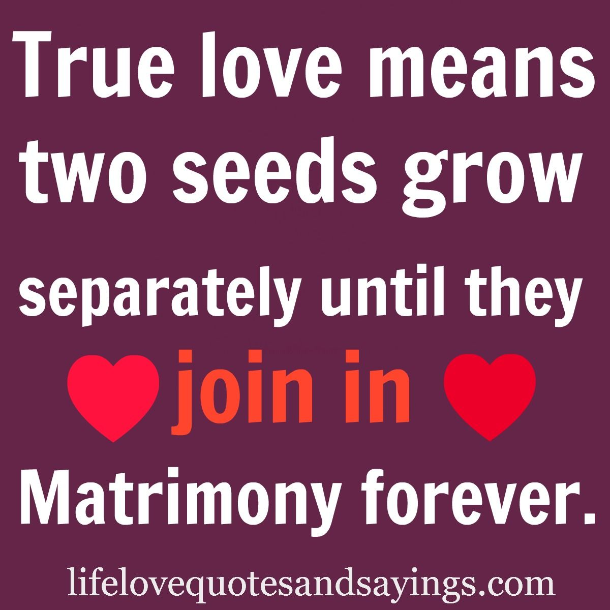 True love means two seeds grow separately until they join in Matrimony forever The best collection of quotes and sayings for every situation in life