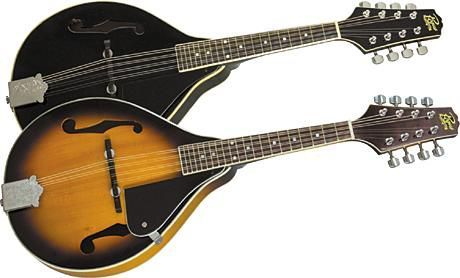 I've fallen in love with the Mandolin recently. I may buy a cheap one to learn on.