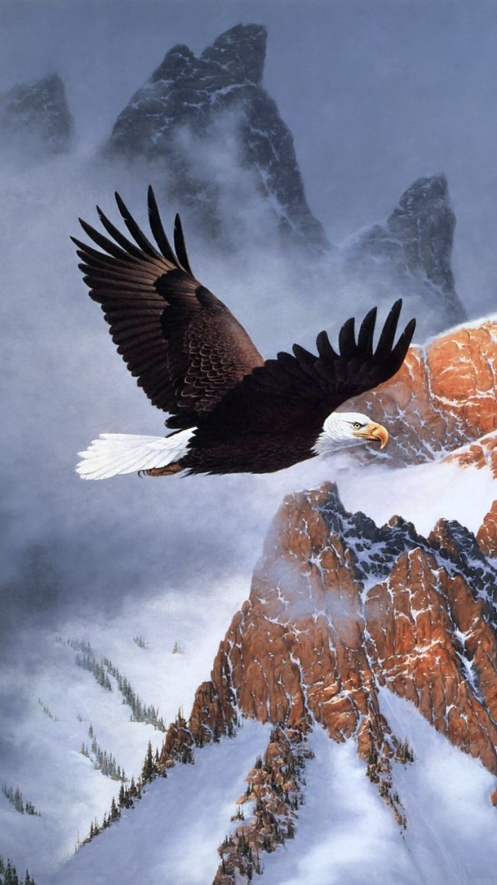 Eagle Wallpaper 4k Iphone in 2020