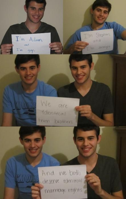 Identical twins bisexual