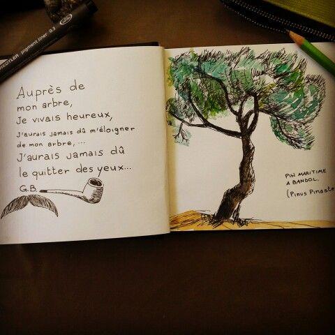 Mon arbre.