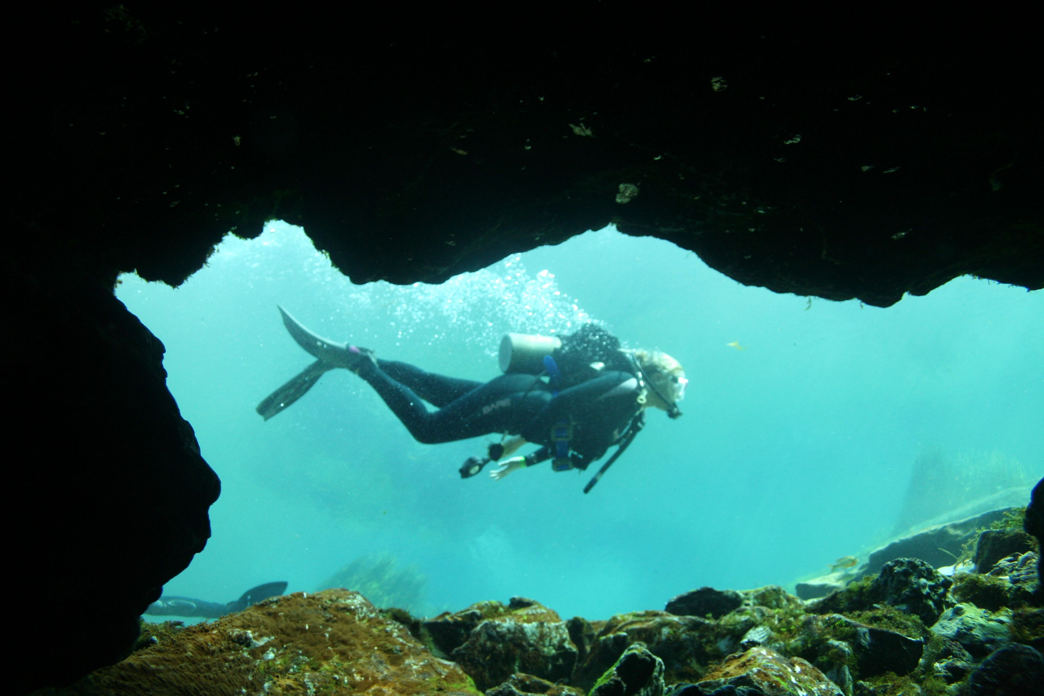 Come Dive Rainbow River with our Adventure Center team
