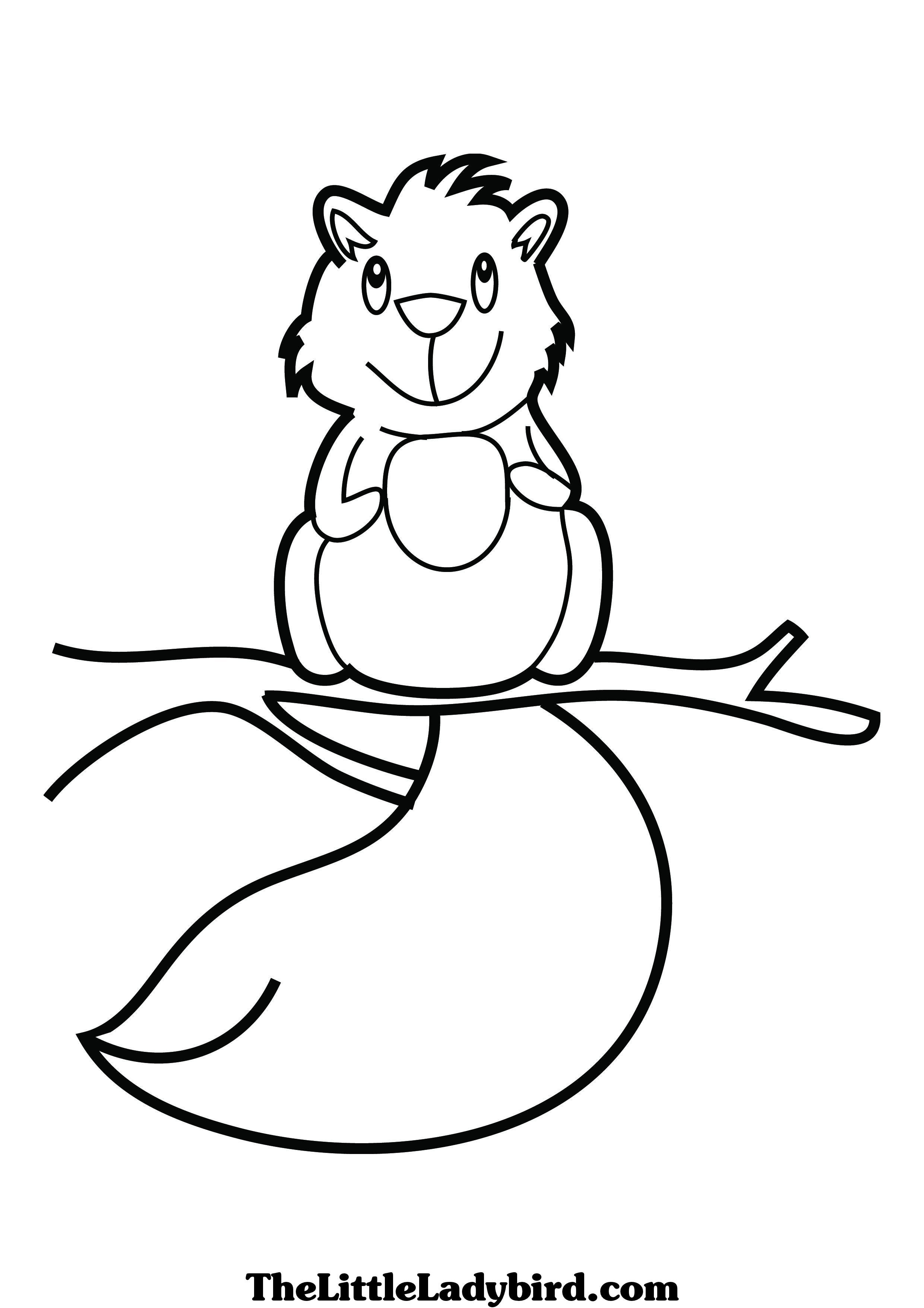 squirrel coloring pages - Google Search | Animals | Pinterest | Squirrel