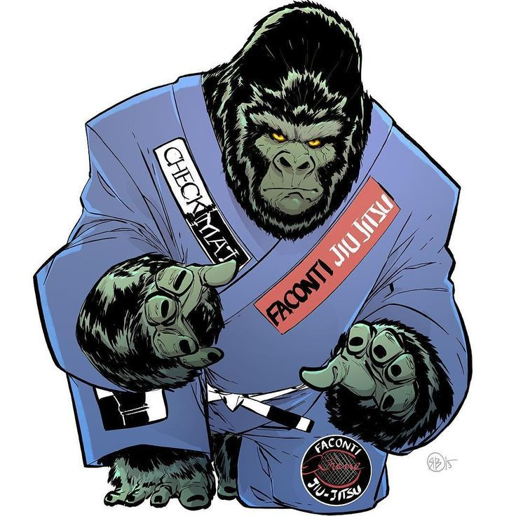Pin on BJJ art