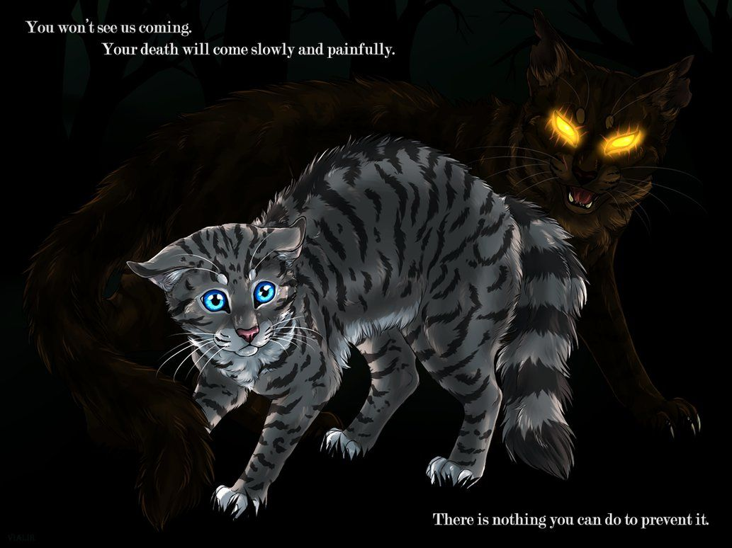 brokenstar and jayfeather by vialirdeviantartcom on
