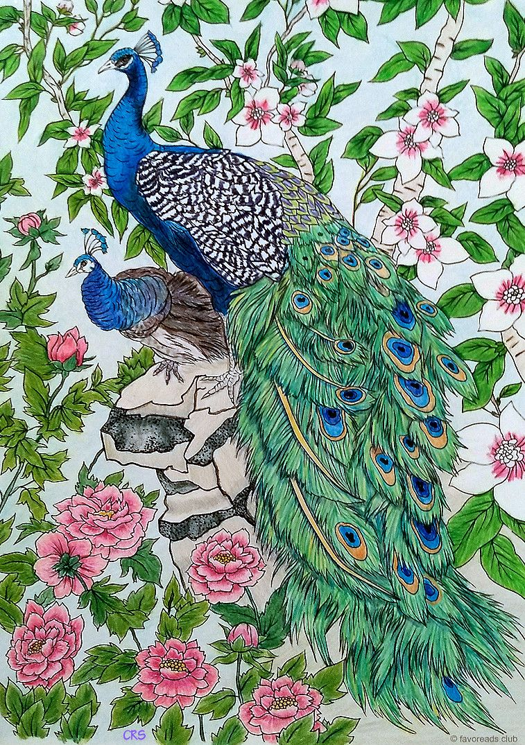 Pin On Favoreads Coloring Submissions