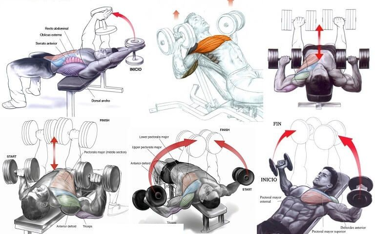 Chest routine perfect Dwayne 'The